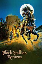 Film Návrat černého hřebce (Návrat černého hřebce) 1983 online ke shlédnutí