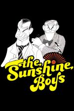 Film Vstupte (The Sunshine Boys) 1975 online ke shlédnutí