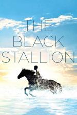 Film Černý hřebec (The Black Stallion) 1979 online ke shlédnutí