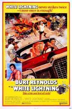 Film Na straně zákona (White Lightning) 1973 online ke shlédnutí