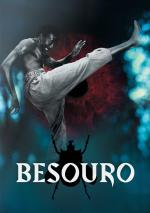 Film Neústupný bojovník (Besouro) 2009 online ke shlédnutí