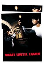 Film Čekej do tmy (Wait Until Dark) 1967 online ke shlédnutí
