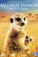 Film Království Surikat: Příběh začíná (The Meerkat Manor: Story Begins) 2008 online ke shlédnutí