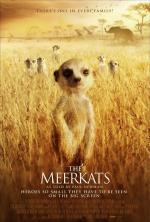 Film Surikaty (The Meerkats) 2008 online ke shlédnutí