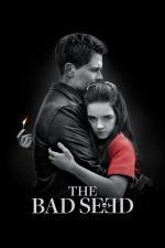 Film The Bad Seed (The Bad Seed) 2018 online ke shlédnutí