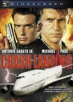 Film Smršť nad Pacifikem (Crash Landing) 2005 online ke shlédnutí