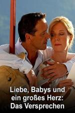 Film Láska, děti a velké srdce: Slib (Liebe, Babys und ein großes Herz - Das Versprechen) 2008 online ke shlédnutí