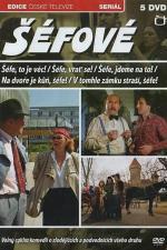 Film V tomhle zámku straší, šéfe! (V tomhle zámku straší, šéfe!) 1989 online ke shlédnutí