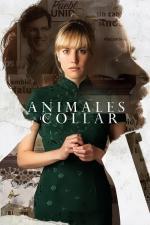 Film Animales sin collar (Unbridled) 2018 online ke shlédnutí