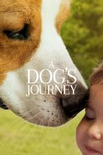 Film Psí poslání 2 (A Dog's Journey) 2019 online ke shlédnutí