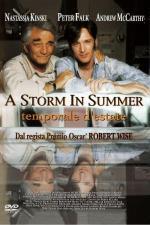 Film Letní bouře (A Storm in Summer) 2000 online ke shlédnutí