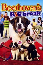 Film Beethoven: Velký trhák (Beethoven's Big Break) 2008 online ke shlédnutí