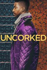 Film Nalijme si čistého vína (Uncorked) 2020 online ke shlédnutí