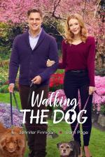 Film Cyklostezka k lásce (Walking the Dog) 2017 online ke shlédnutí