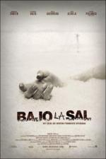 Film Šarlatová sůl (Bajo la sal) 2008 online ke shlédnutí