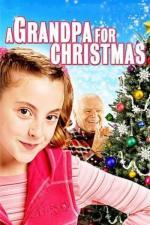 Film A Grandpa for Christmas (A Grandpa for Christmas) 2007 online ke shlédnutí