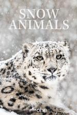 Film Život v království sněhu (Snow Animals) 2019 online ke shlédnutí