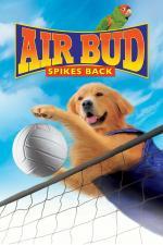 Film Můj pes Buddy V (Air Bud: Spikes Back) 2003 online ke shlédnutí