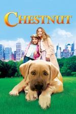 Film Roztomilý mazlíček (Chestnut: Hero of Central Park) 2004 online ke shlédnutí