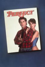 Film Dokonalí (Perfect) 1985 online ke shlédnutí