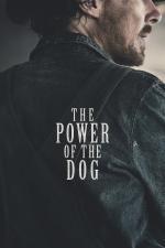 Film Síla psa (The Power of the Dog) 2021 online ke shlédnutí