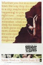 Film Třpyt v trávě (Splendor in the Grass) 1961 online ke shlédnutí