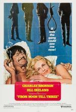 Film Od dvanácti do tří (From Noon Till Three) 1976 online ke shlédnutí