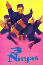 Film Tři stateční (3 Ninjas) 1992 online ke shlédnutí