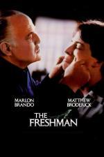Film Nováček (The Freshman) 1990 online ke shlédnutí