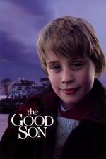 Film Dobrý synek (The Good Son) 1993 online ke shlédnutí