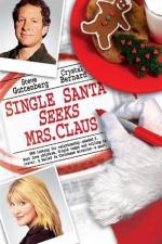 Film Santa hledá ženu (Single Santa Seeks Mrs. Claus) 2004 online ke shlédnutí