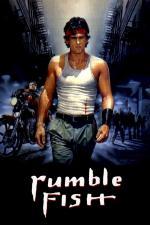 Film Dravé ryby (Rumble Fish) 1983 online ke shlédnutí