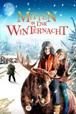 Film Příběh Vánoční noci (Midden in De Winternacht) 2013 online ke shlédnutí