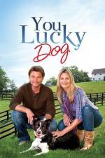 Film Štěstí jménem Lucky (Family Gathering) 2010 online ke shlédnutí