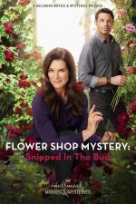 Film Záhada v květinářství: Utnuto v počátku (Flower Shop Mystery: Snipped in the Bud) 2016 online ke shlédnutí