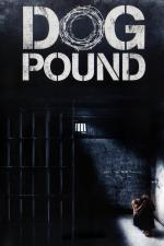Film Psí útulek (Dog Pound) 2010 online ke shlédnutí