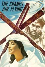 Film Jeřábi táhnou (Letyat zhuravli) 1957 online ke shlédnutí