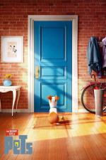 Film Tajný život mazlíčků 3 Mini-Movies (The Secret Life of Pets 3 Mini-Movies) 2016 online ke shlédnutí