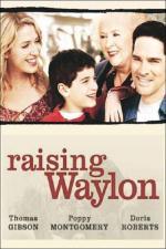 Film Druhá šance (Raising Waylon) 2004 online ke shlédnutí