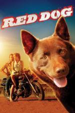 Film Red Dog (Red Dog) 2011 online ke shlédnutí