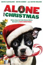 Film Zachráněné Vánoce (Alone for Christmas) 2013 online ke shlédnutí