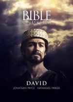Film Biblické příběhy: David E1 (David E1) 1997 online ke shlédnutí