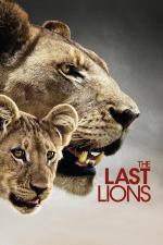 Film Poslední lvi (The Last Lions) 2011 online ke shlédnutí