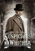 Film Podezření pana Whichera: Vražda v Andělské uličce (The Suspicions of Mr Whicher: The Murder in Angel Lane) 2013 online ke shlédnutí