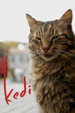 Film Kedi (Kedi) 2016 online ke shlédnutí